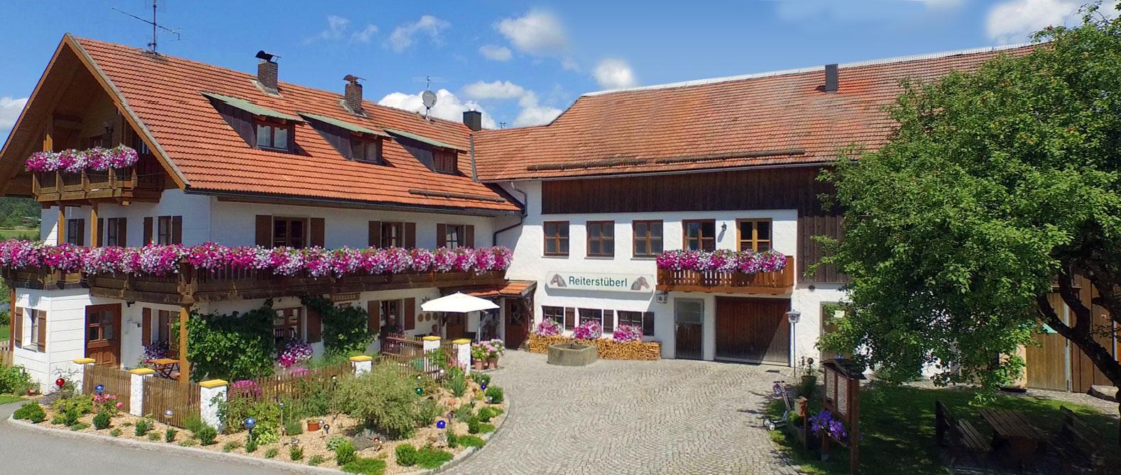 Forellen-Reiterhof Schanzer im Bayerischen Wald