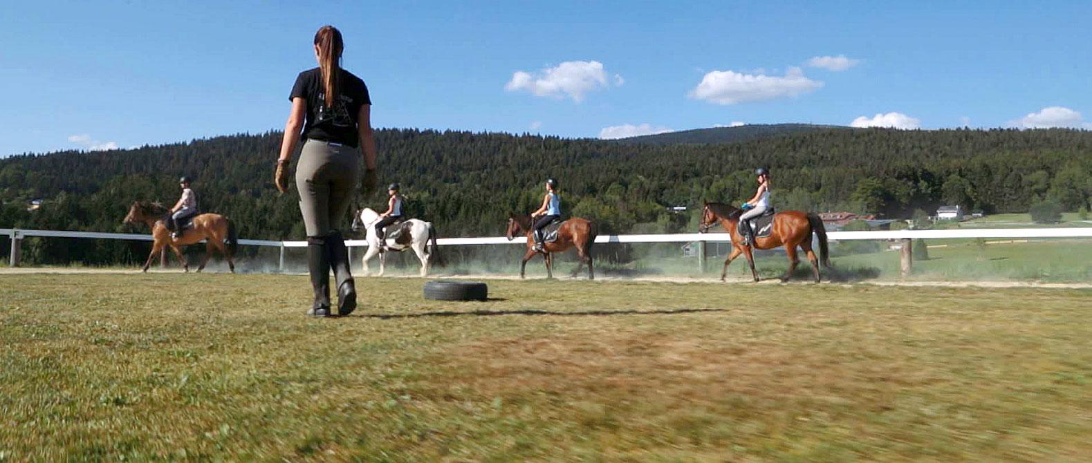 Reiturlaub im Dreiländereck Bayerischer Wald