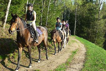 Wanderreiten im Bayerischen Wald