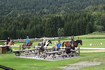 Reiterferien für Familien in Bayern