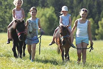 Ponyführen auf dem Reiterhof im Bayerischen Wald