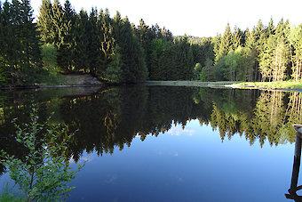 Angelurlaub im Bayerischen Wald