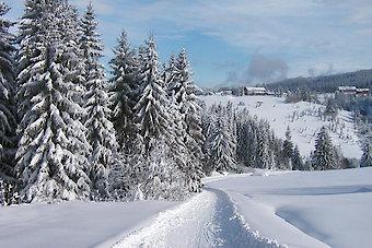 Winterurlaub in der Dreiländerregion Bayerischer Wald